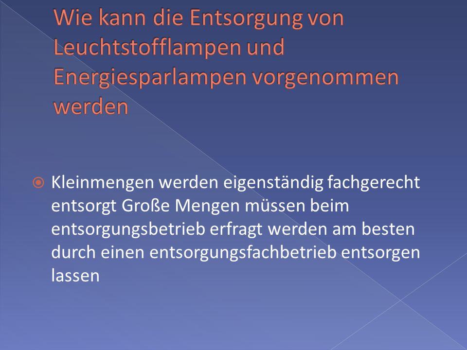 Wie kann die Entsorgung von Leuchtstofflampen und Energiesparlampen vorgenommen werden