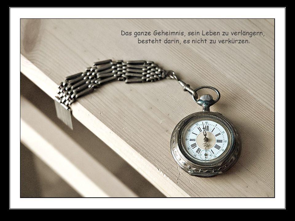 Das ganze Geheimnis, sein Leben zu verlängern, besteht darin, es nicht zu verkürzen.