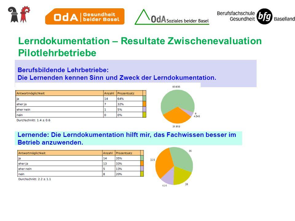 Lerndokumentation – Resultate Zwischenevaluation Pilotlehrbetriebe
