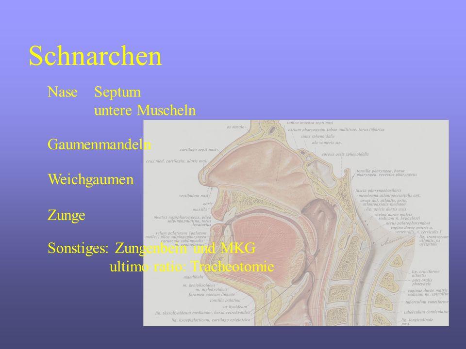 Schnarchen Nase Septum untere Muscheln Gaumenmandeln Weichgaumen Zunge