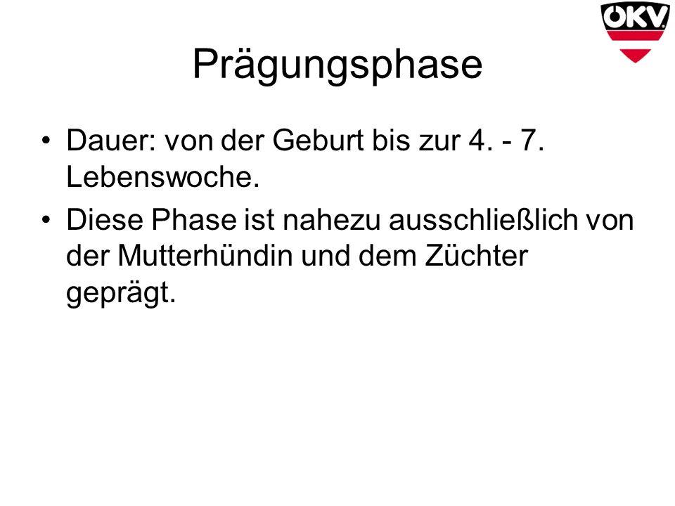 Prägungsphase Dauer: von der Geburt bis zur 4. - 7. Lebenswoche.