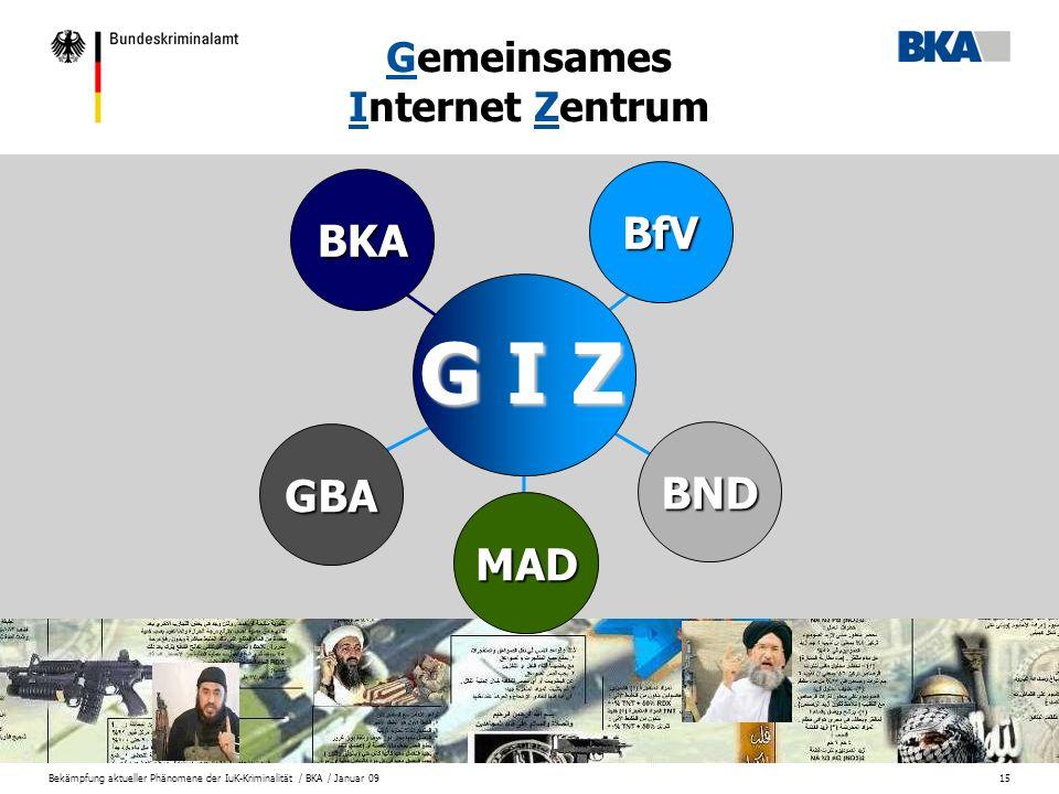 Gemeinsames Internet Zentrum