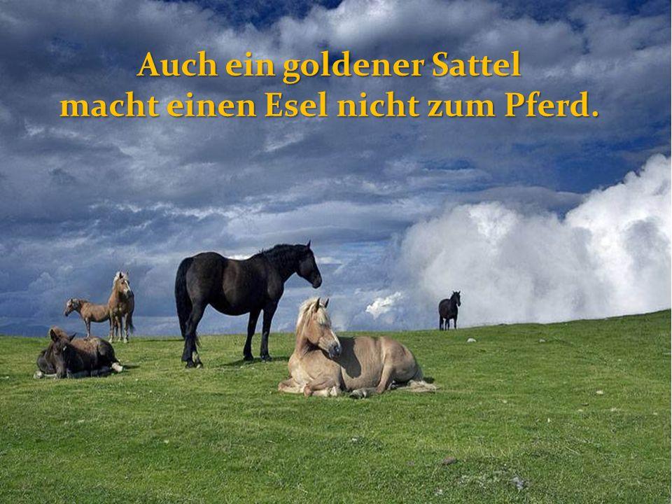 Auch ein goldener Sattel macht einen Esel nicht zum Pferd.