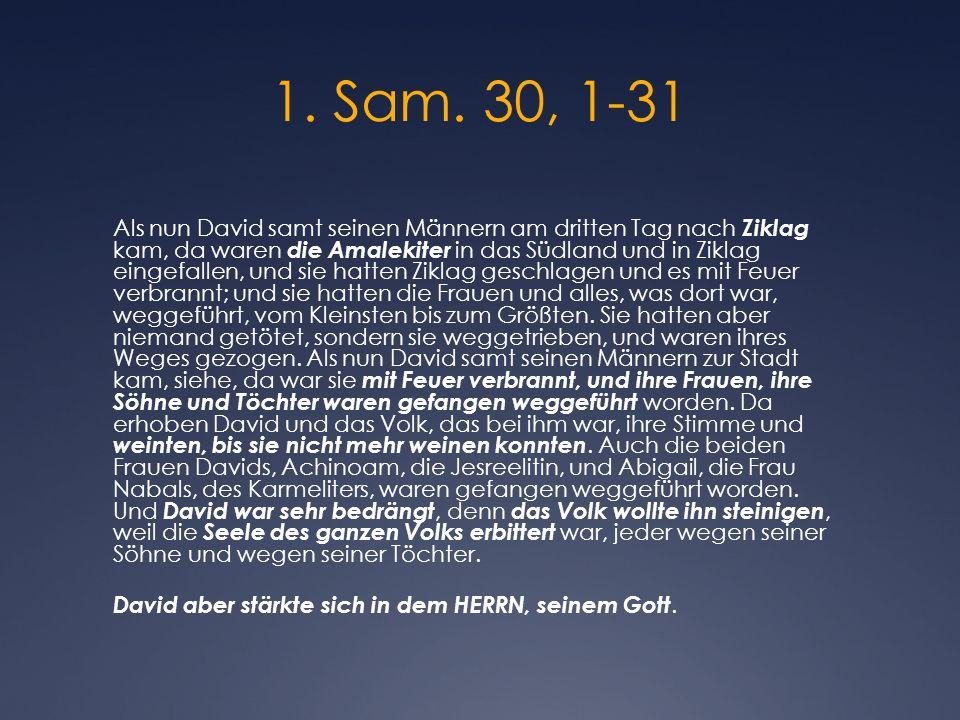 1. Sam. 30, 1-31