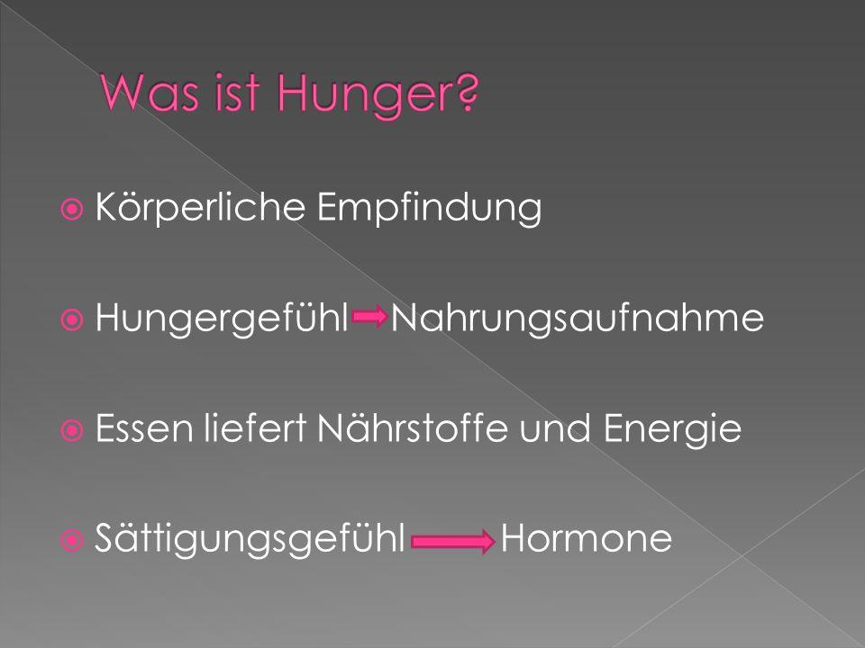 Was ist Hunger Körperliche Empfindung Hungergefühl Nahrungsaufnahme