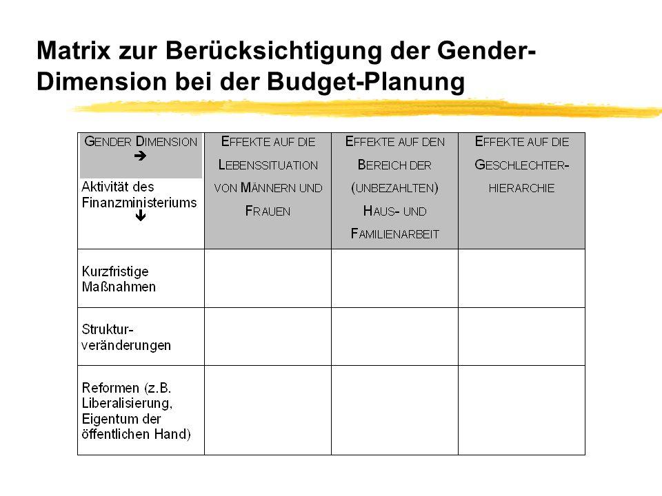 Matrix zur Berücksichtigung der Gender-Dimension bei der Budget-Planung