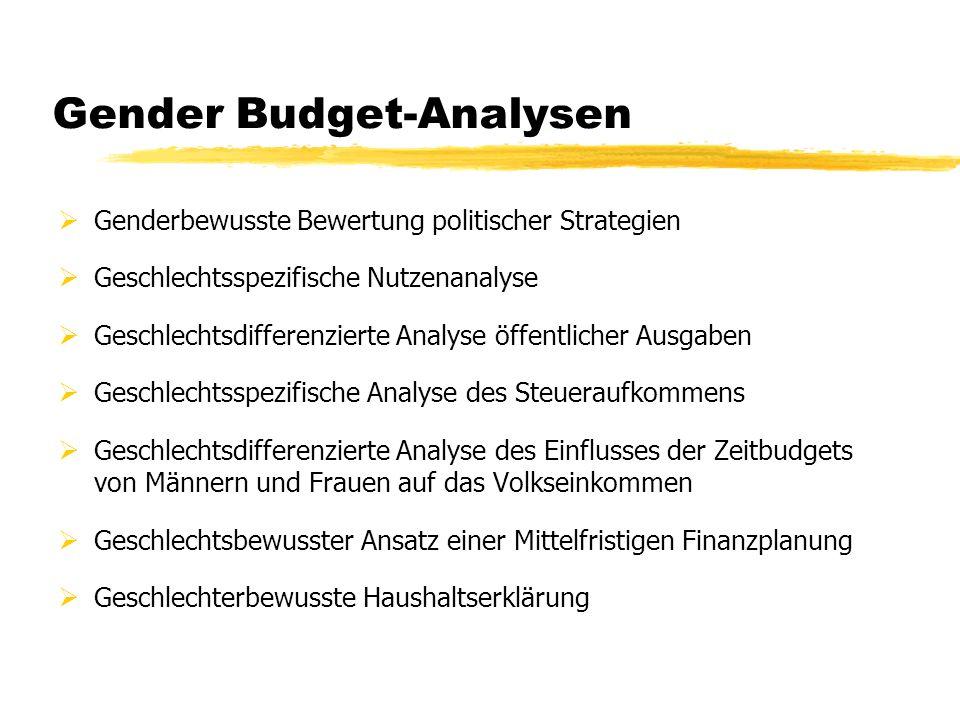 Gender Budget-Analysen