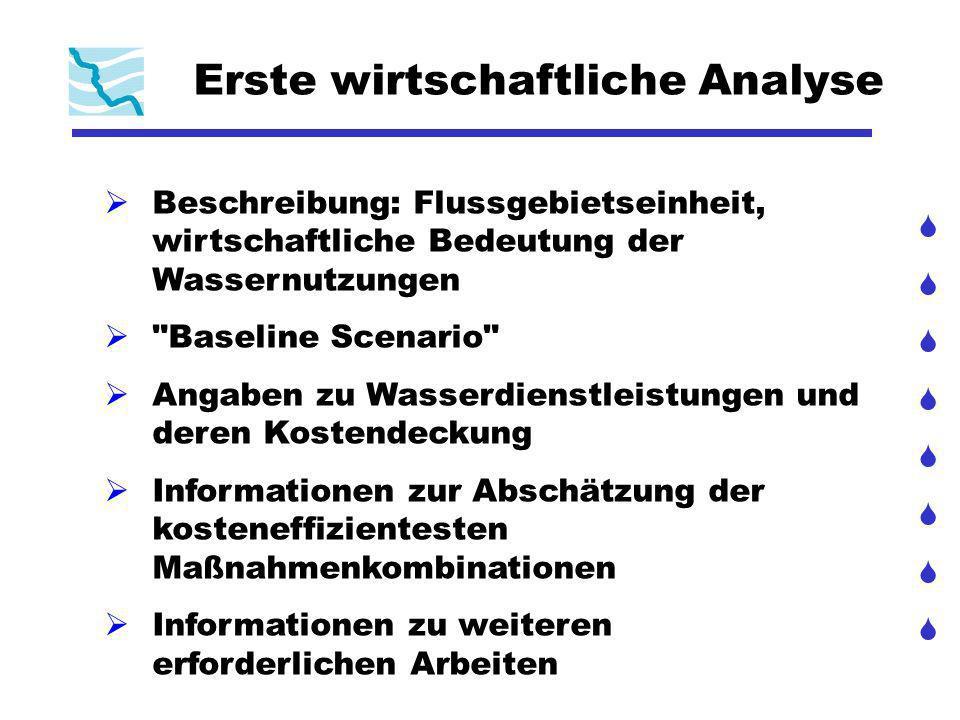 Erste wirtschaftliche Analyse