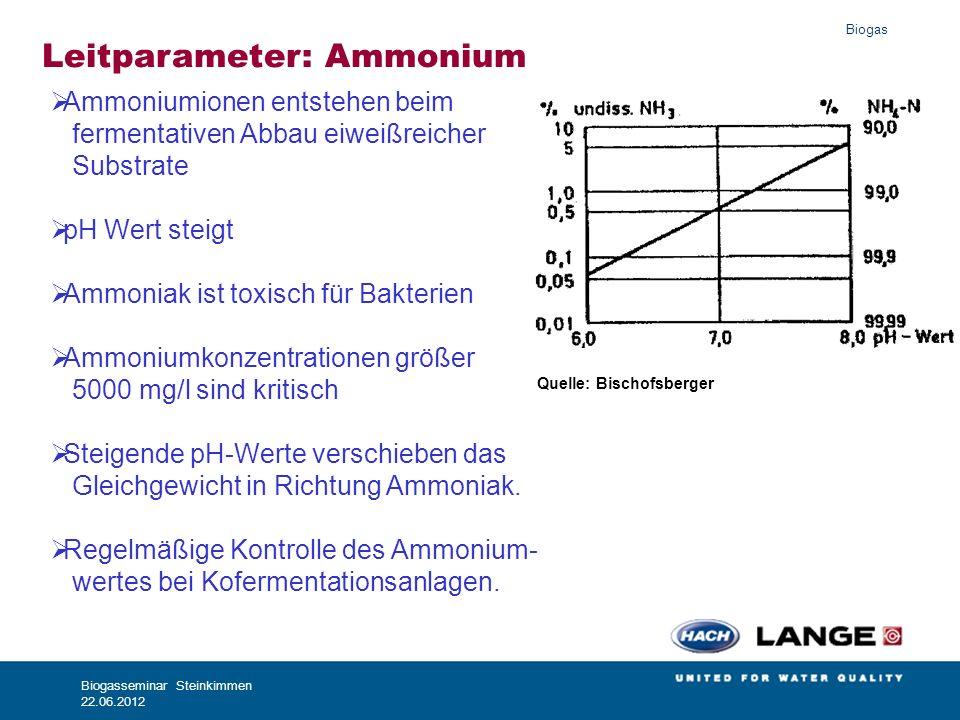 Leitparameter: Ammonium