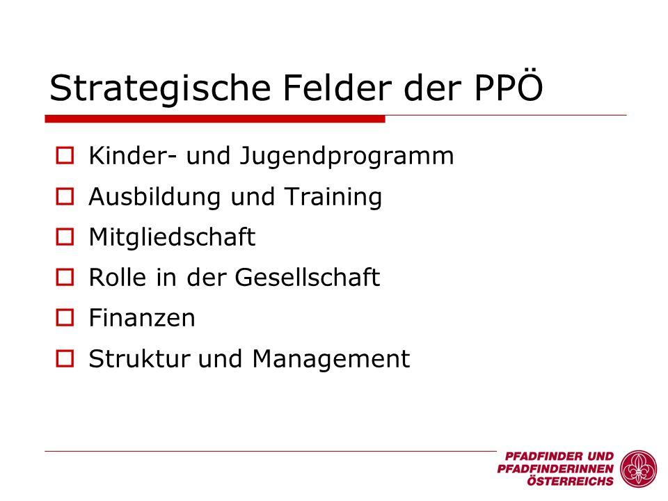Strategische Felder der PPÖ