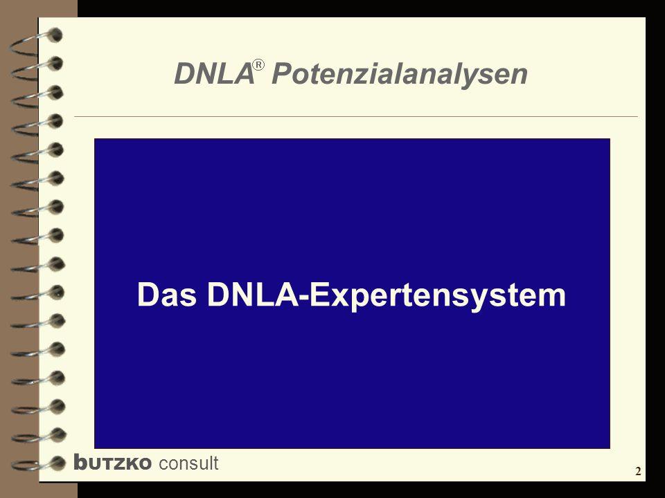 Das DNLA-Expertensystem