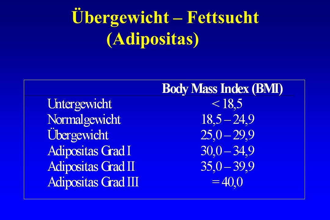 Übergewicht – Fettsucht (Adipositas)