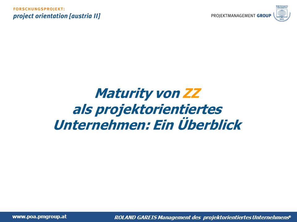 Maturity von ZZ als projektorientiertes Unternehmen: Ein Überblick