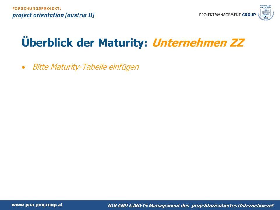 Überblick der Maturity: Unternehmen ZZ