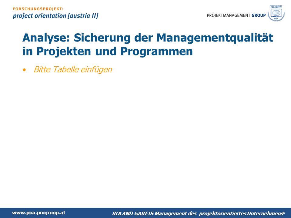 Analyse: Sicherung der Managementqualität in Projekten und Programmen