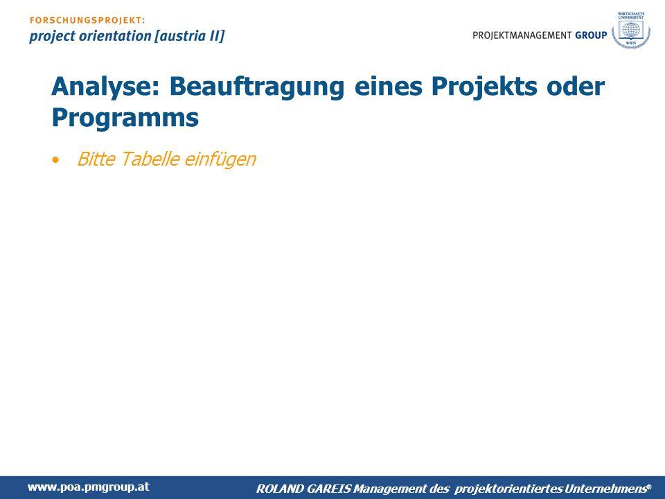 Analyse: Beauftragung eines Projekts oder Programms