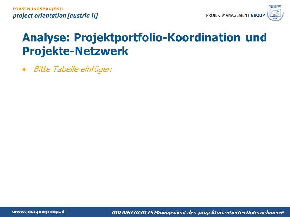 Analyse: Projektportfolio-Koordination und Projekte-Netzwerk