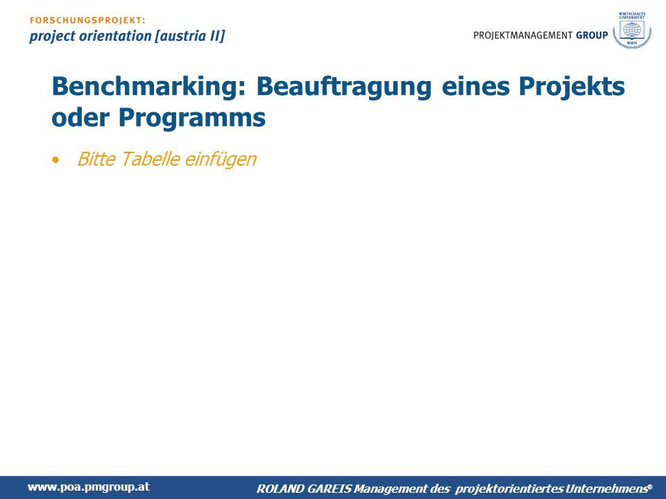Benchmarking: Beauftragung eines Projekts oder Programms