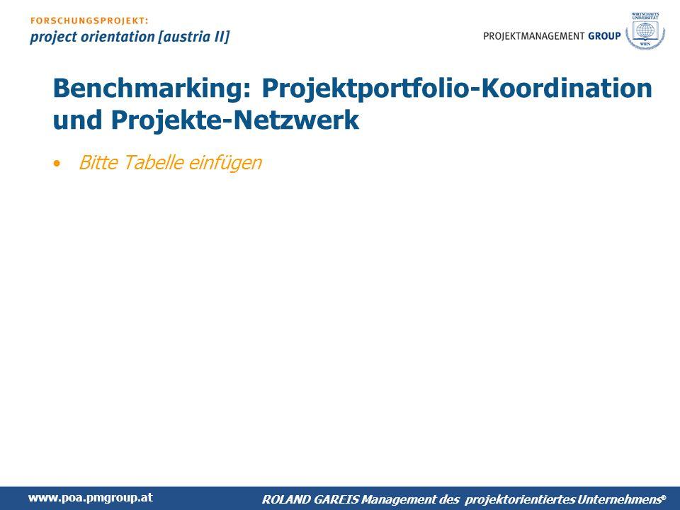 Benchmarking: Projektportfolio-Koordination und Projekte-Netzwerk