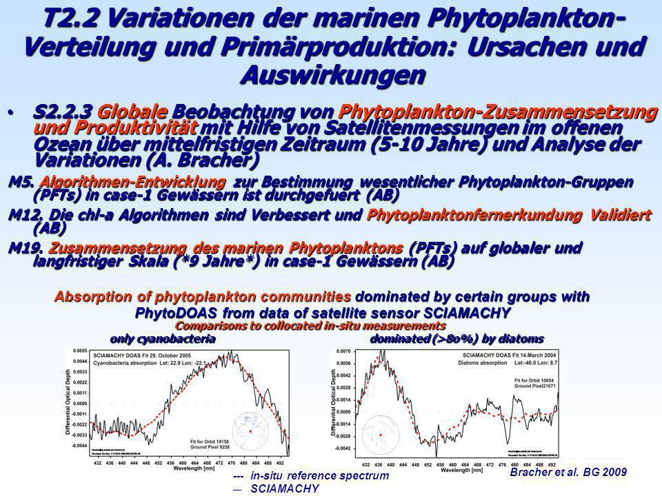 T2.2 Variationen der marinen Phytoplankton-Verteilung und Primärproduktion: Ursachen und Auswirkungen