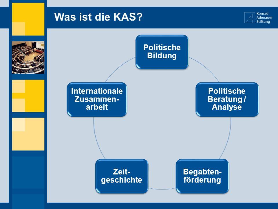 Politische Beratung / Analyse Internationale Zusammen-arbeit