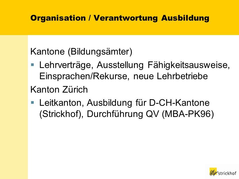 Organisation / Verantwortung Ausbildung