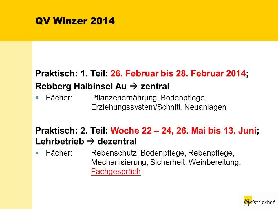 QV Winzer 2014 Praktisch: 1. Teil: 26. Februar bis 28. Februar 2014;