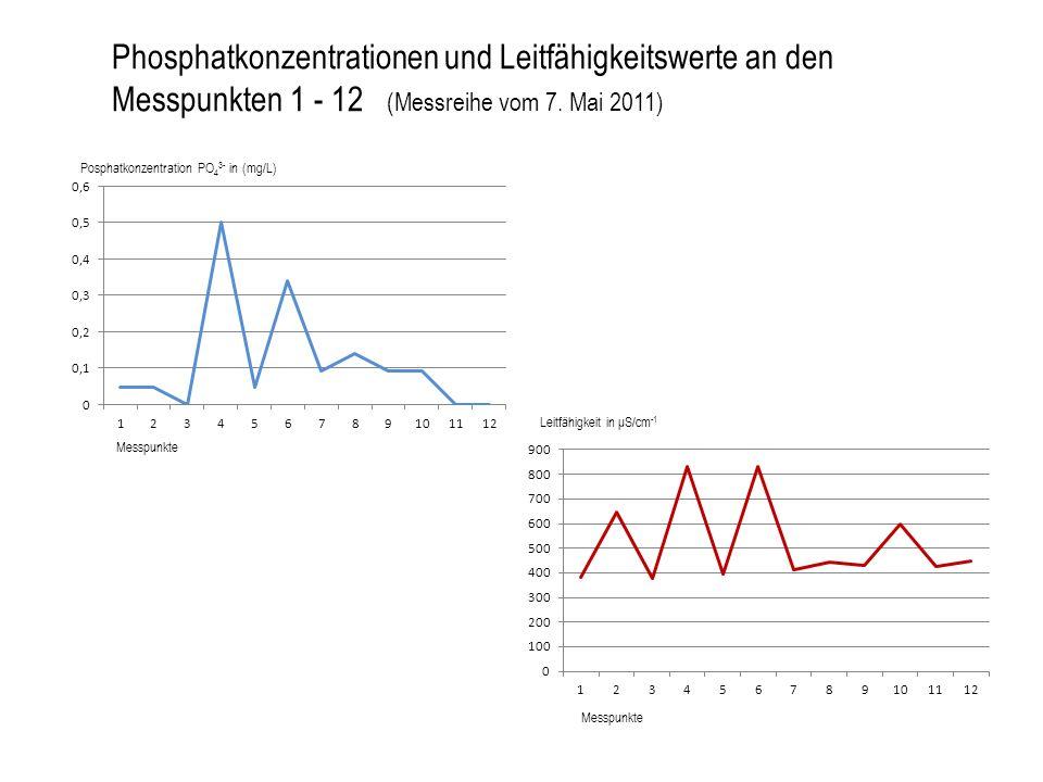 Phosphatkonzentrationen und Leitfähigkeitswerte an den