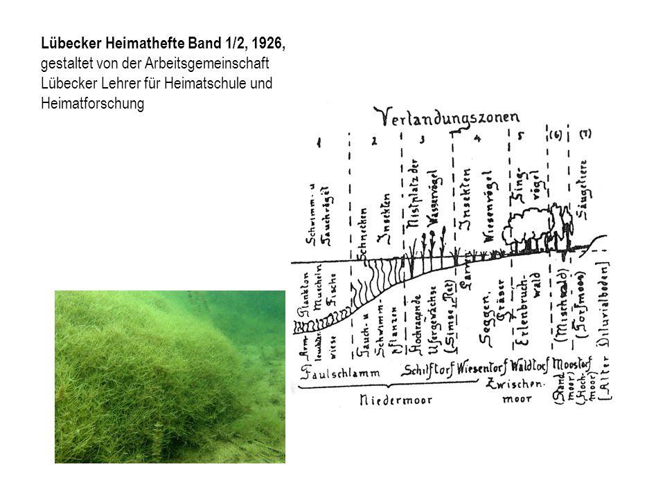 Lübecker Heimathefte Band 1/2, 1926,