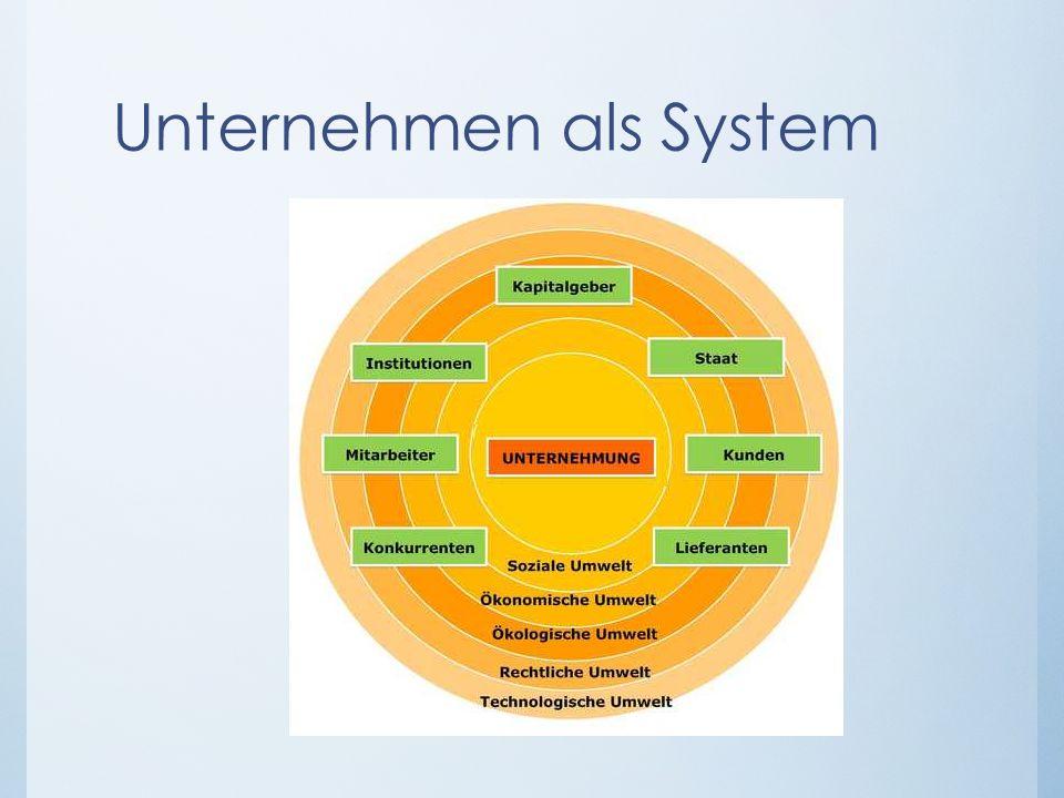 Unternehmen als System