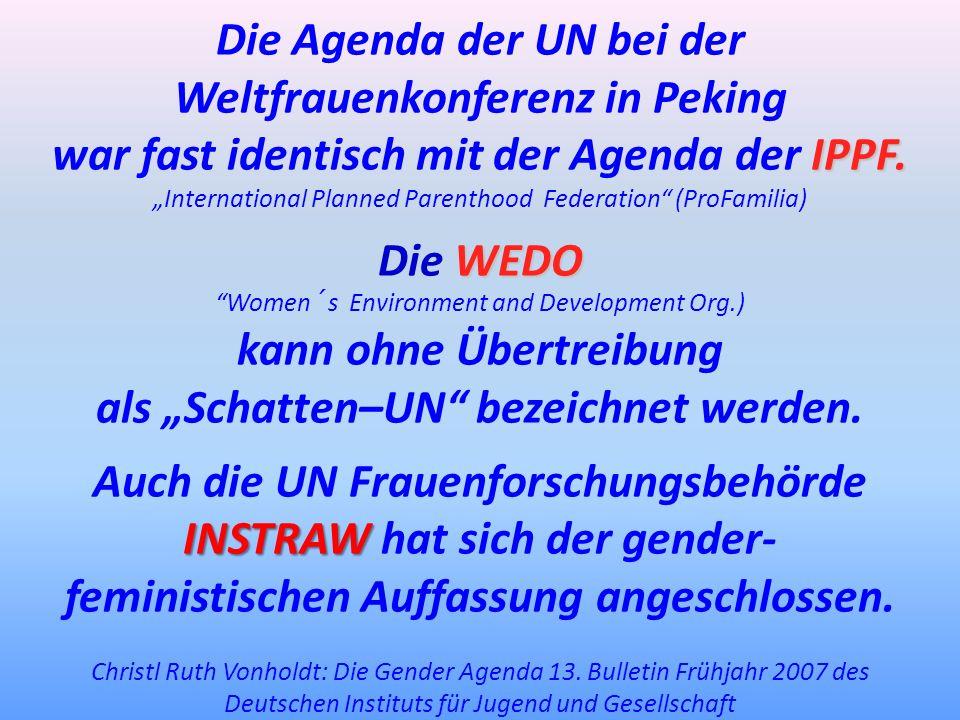Die Agenda der UN bei der Weltfrauenkonferenz in Peking