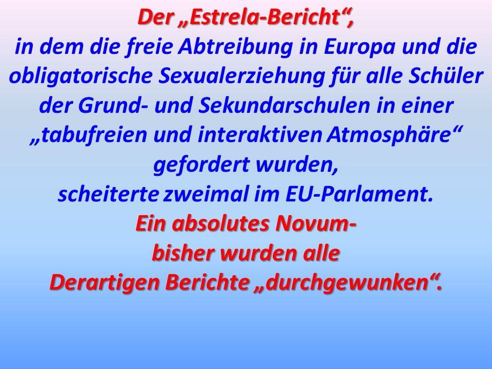 """Der """"Estrela-Bericht ,"""