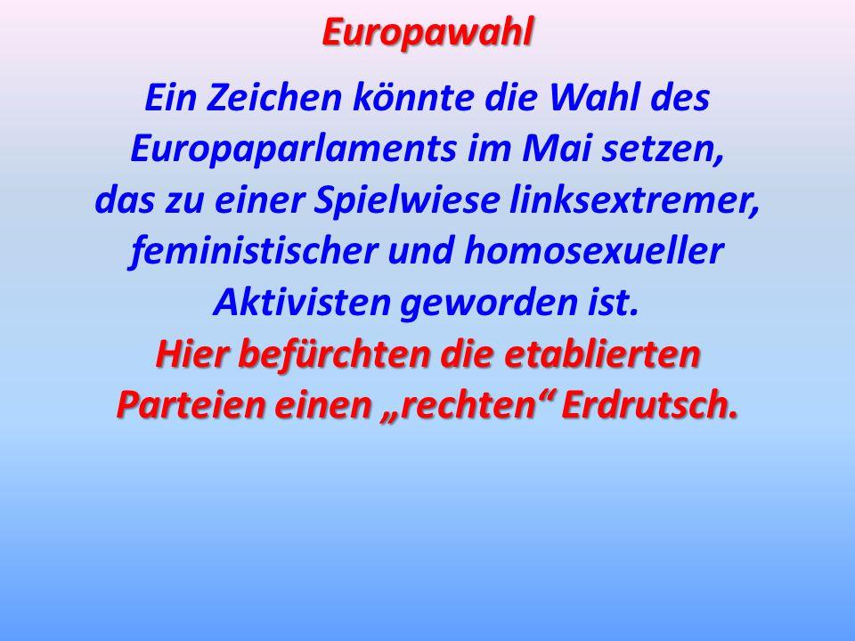 Ein Zeichen könnte die Wahl des Europaparlaments im Mai setzen,