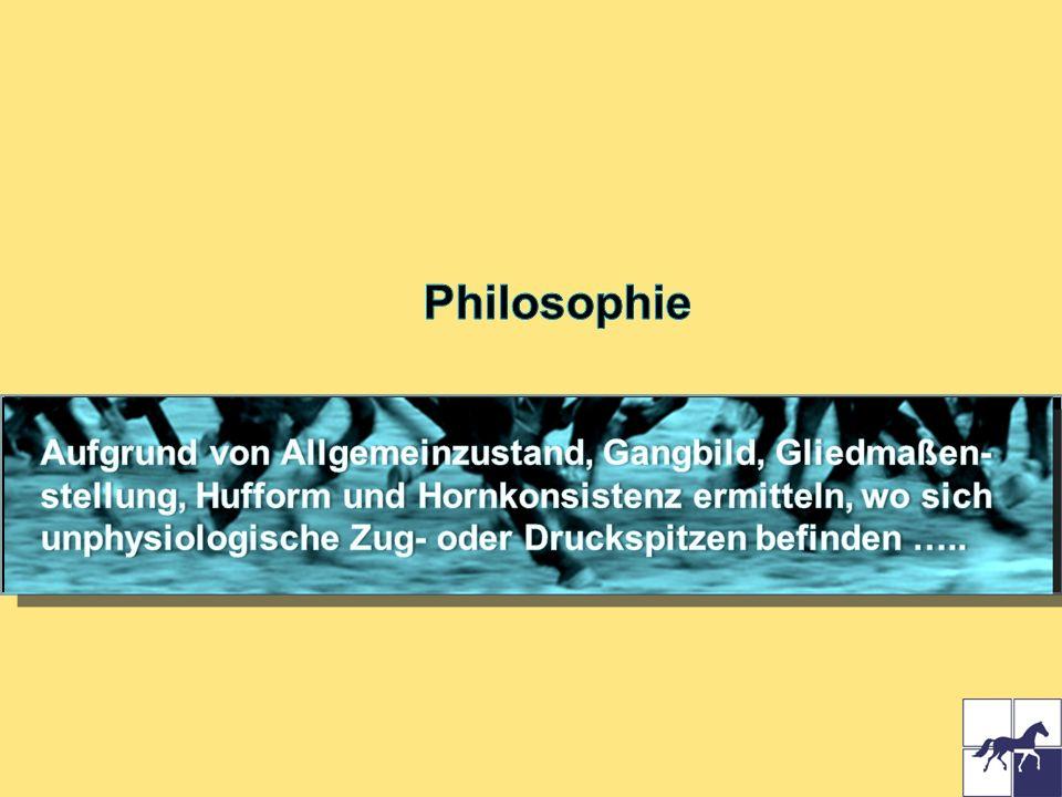 Philosophie Aufgrund von Allgemeinzustand, Gangbild, Gliedmaßen-