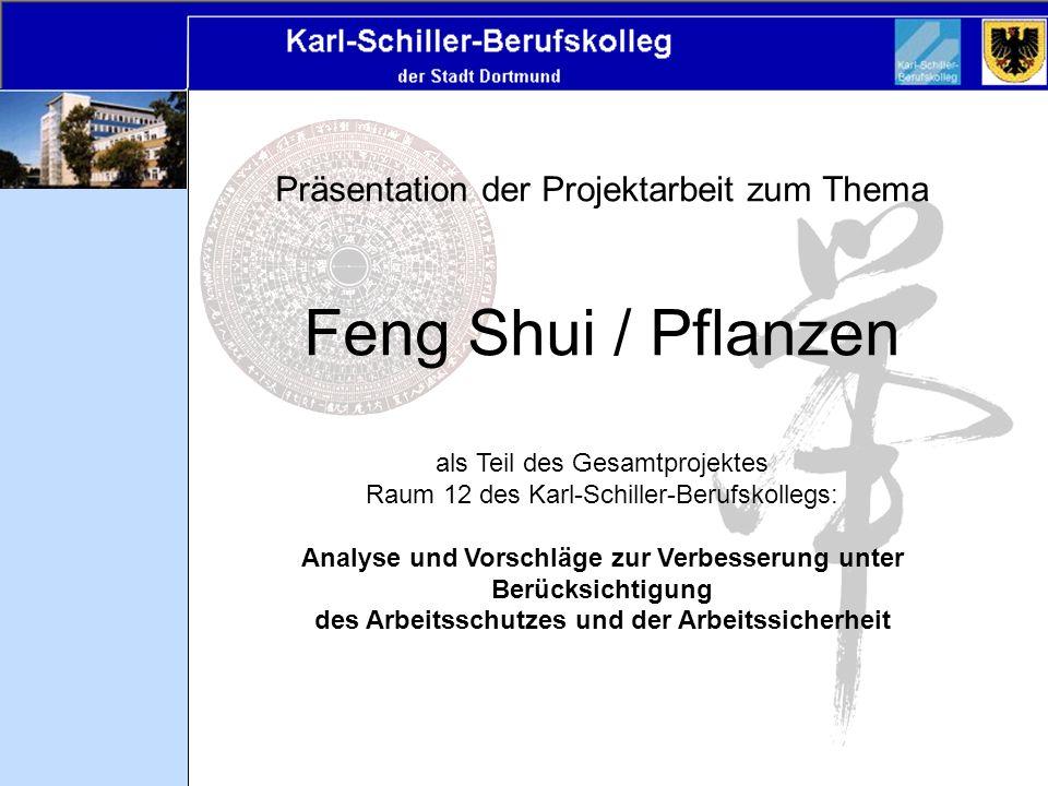 Präsentation der Projektarbeit zum Thema Feng Shui / Pflanzen