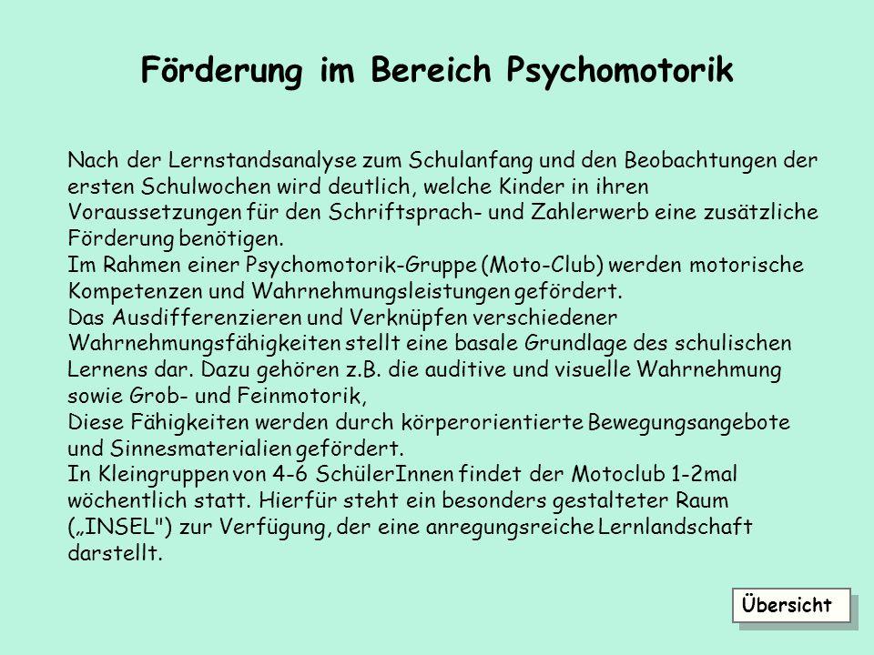 Förderung im Bereich Psychomotorik