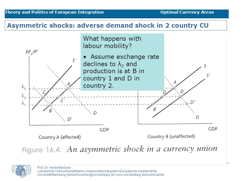 Asymmetric shocks: adverse demand shock in 2 country CU