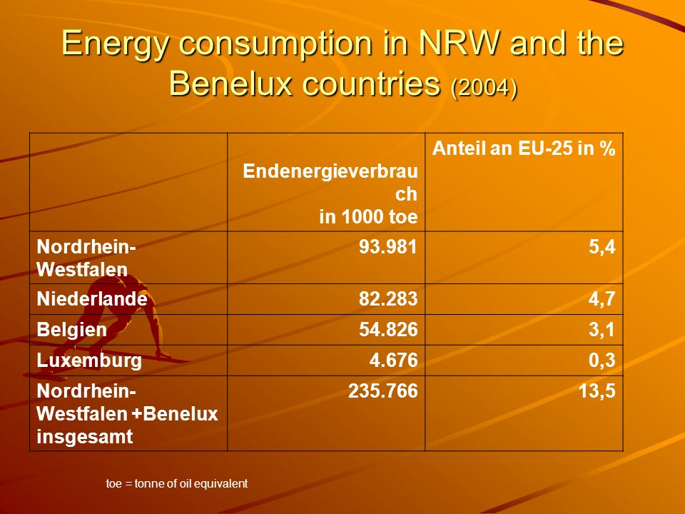 Energy consumption in NRW and the Benelux countries (2004)