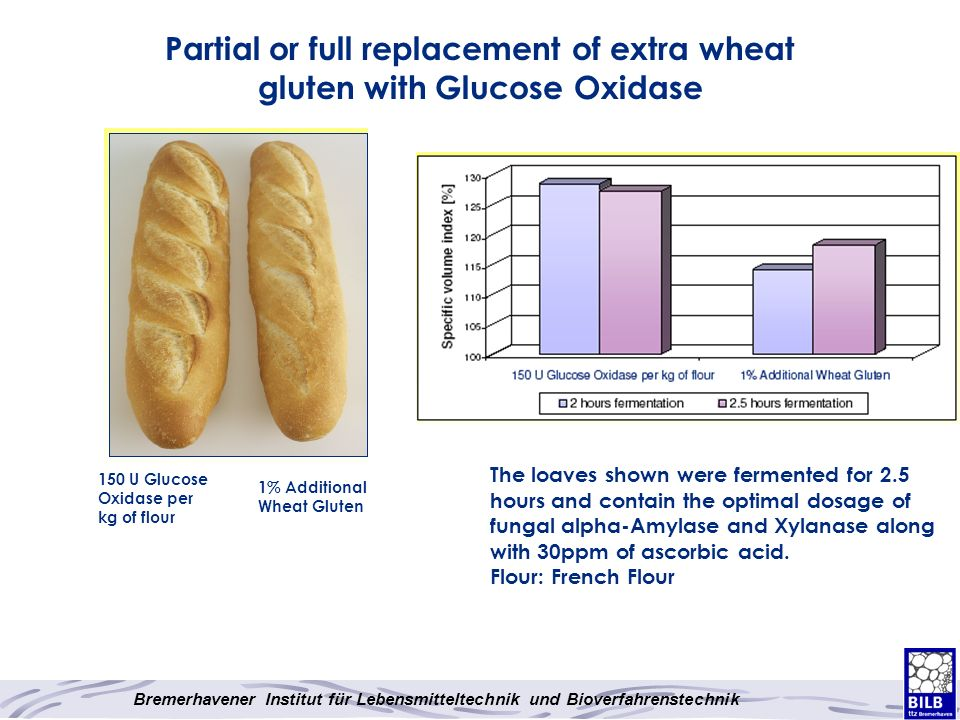 Partial or full replacement of extra wheat gluten with Glucose Oxidase