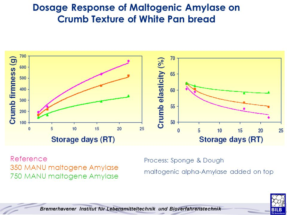 Dosage Response of Maltogenic Amylase on Crumb Texture of White Pan bread