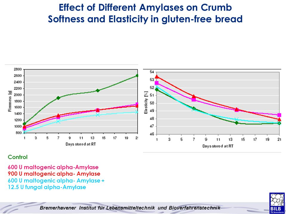 Effect of Different Amylases on Crumb Softness and Elasticity in gluten-free bread