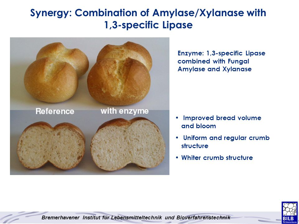Synergy: Combination of Amylase/Xylanase with 1,3-specific Lipase