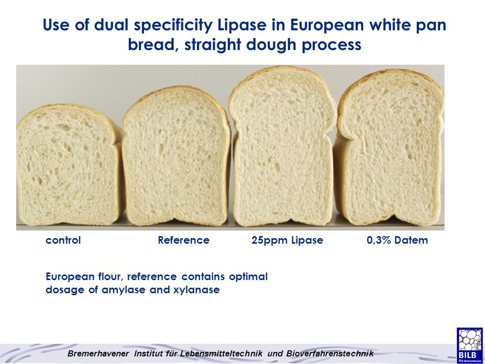 Use of dual specificity Lipase in European white pan bread, straight dough process