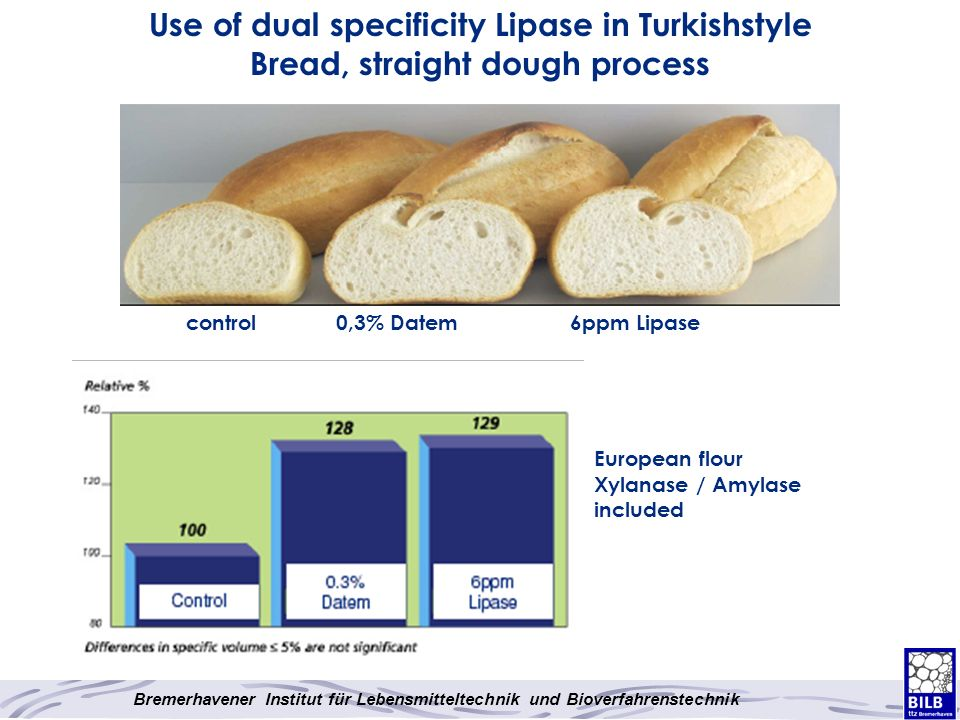 Use of dual specificity Lipase in Turkishstyle Bread, straight dough process