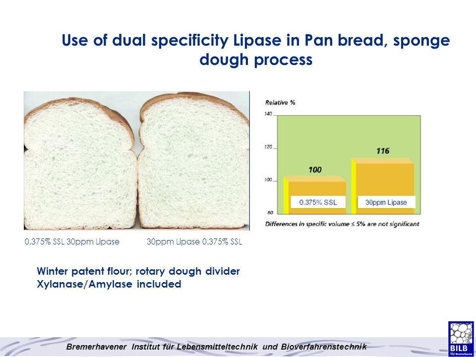 Use of dual specificity Lipase in Pan bread, sponge dough process