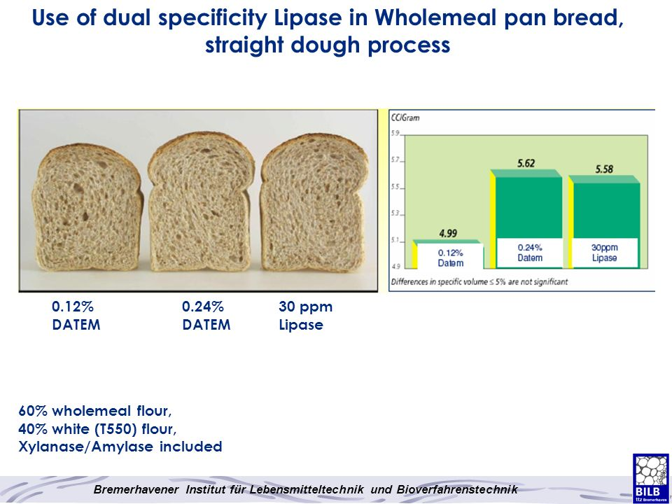 Use of dual specificity Lipase in Wholemeal pan bread, straight dough process