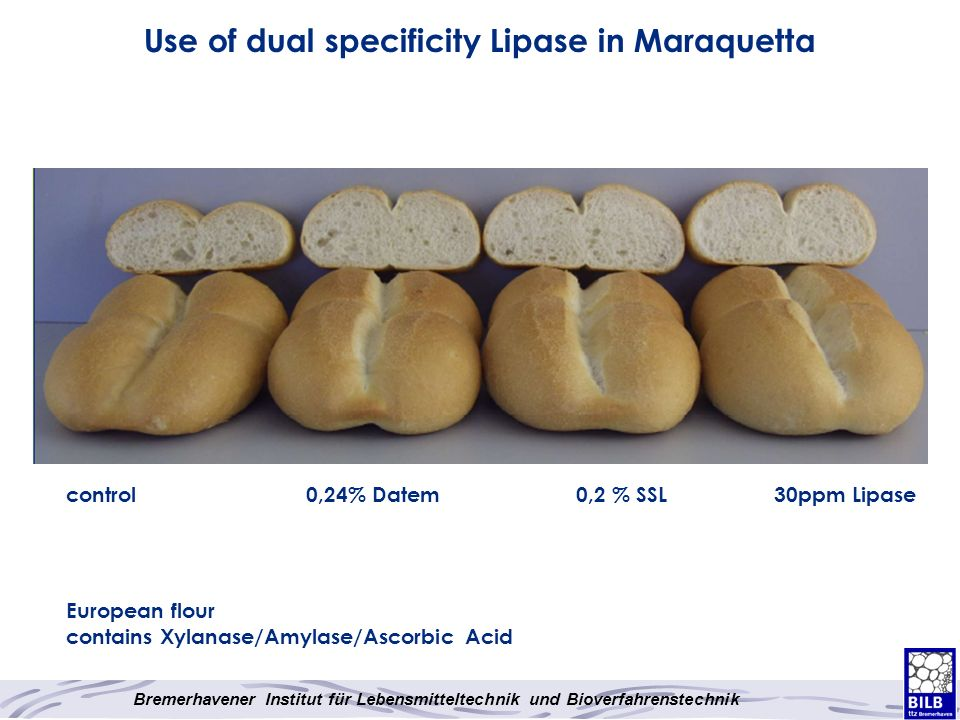 Use of dual specificity Lipase in Maraquetta