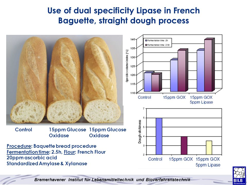 Use of dual specificity Lipase in French Baguette, straight dough process