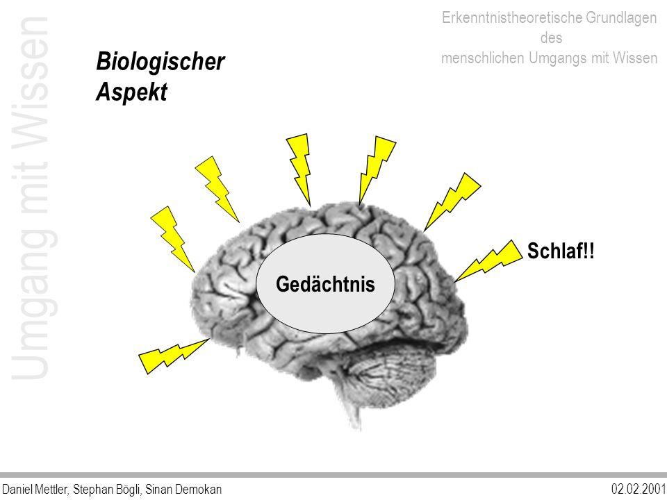 Biologischer Aspekt Umgang mit Wissen Gedächtnis Schlaf!!