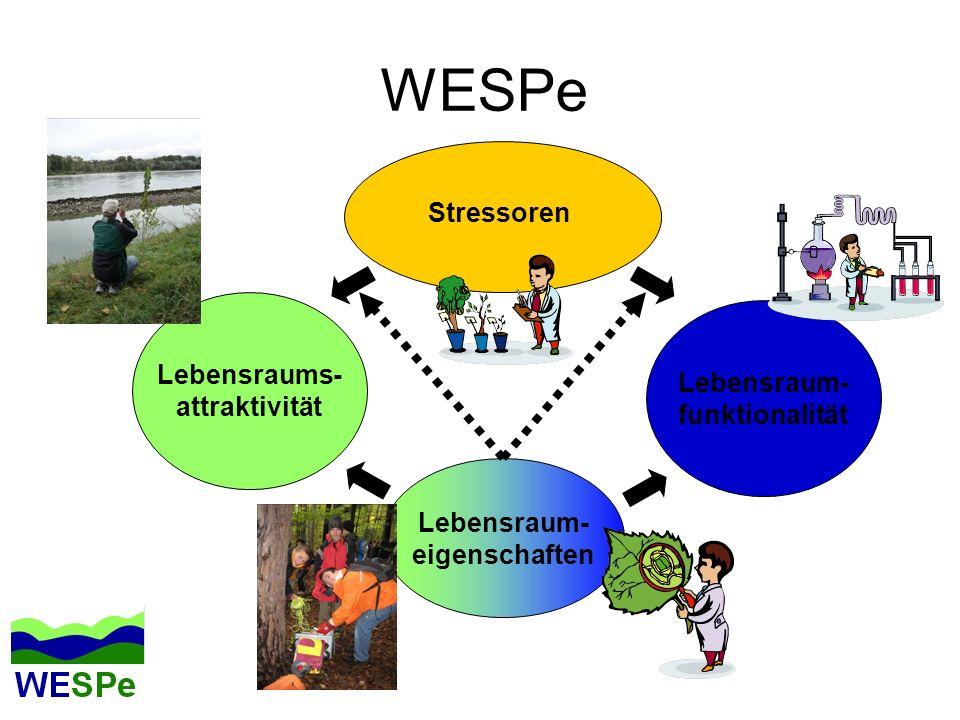 WESPe Stressoren Lebensraums- Lebensraum- attraktivität funktionalität